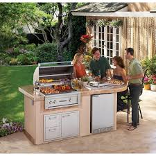 Backyard Gas Grill by Lynx Sedona Deluxe Bbq Island With 30 Inch Propane Gas Bbq Grill