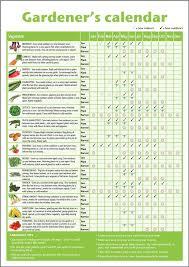 a3 novice gardener u0027s beginner u0027s vegetable growing gardening