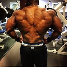 best tree backs in bodybuilding generation iron
