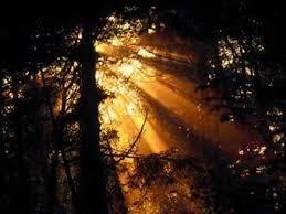 A Voice In The Dark Blind Guardian Voice In The Dark 04 36 смотреть видео на Delormusic Ru