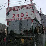 delancy street christmas trees 22 reviews christmas trees