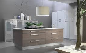 Cabinet  Wonderful Painting Laminate Cabinet Doors Painting - Painting laminate kitchen cabinets