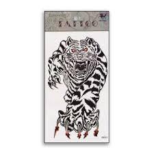 raging tiger spirit temporary martial arts