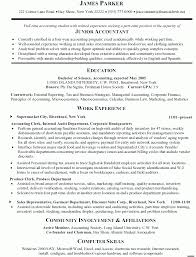 Accounting Resume Experience Ernie Tripp Resume An Easy Topic For A Research Paper The Bluest