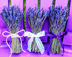 Lavender Home Decor English Lavender Etsy
