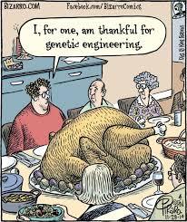 thanksgiving funnies no 8