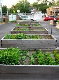 Best Soil For Vegetable Garden In Raised Bed by Best Wood For Raised Garden Beds 25 Diy Raised Garden Beds