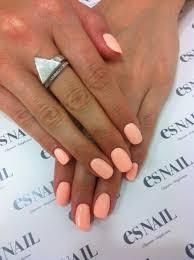 essie nail polish e710 van d u0027go new creamy peach color ebay