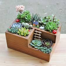 succulent planters best 25 succulent planters ideas on pinterest coming soon succulent