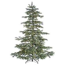 noble fir tree fishwolfeboro