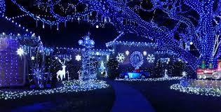 blue christmas lights cedar hill bachelor family takes home the prize