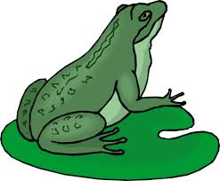 picture of a cartoon frog group 65