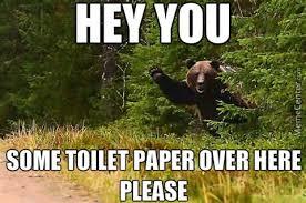 Funny Bear Meme - funny for funny bear hunting memes www funnyton com