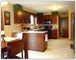 Stain Oak Kitchen Cabinets Gel Stain Oak Kitchen Cabinets Home Design Ideas