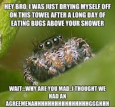 Spider Meme Misunderstood Spider Meme - the sad world of the misunderstood house spider