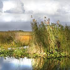 Florida National Parks images Information on florida national parks usa today jpg
