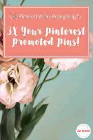 3x your pinterest promoted pins create and use a visitor