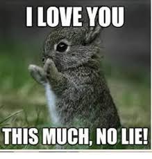 I Love You This Much Meme - i love you this much nolie love meme on me me