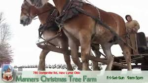 manners christmas tree farm 440 294 2444 youtube
