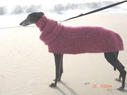 91 best jerseys de punto para galgos knit sweaters for greyhound