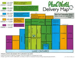 plant delivery delivery plant world