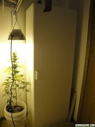 yogadude u0027s 150w hps closet grow page 2