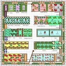 layout kitchen garden vegetable and herb garden layout kitchen garden designs kitchen