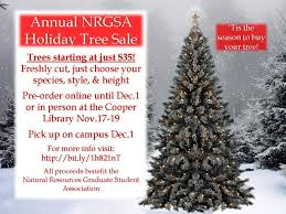 Christmas Tree Buy Online - buy your christmas tree here natural resources graduate student