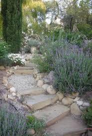 garden ideas best 25 drought resistant landscaping ideas on pinterest