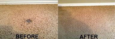19 pearland carpet a amp a cleaning services residential