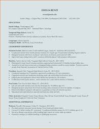 Best Resume Format Download Ms Word by Useful It Resume Format Download Also Resume Format Write The Best