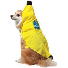 how to make a banana costume for halloween chiquita banana pet costume buycostumes com