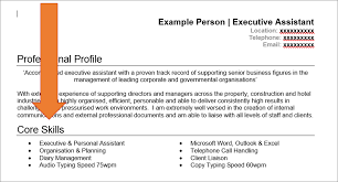Resume Skill Section Experience Section Of A Resume Free Resume Example And Writing