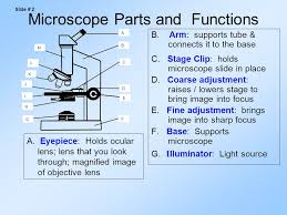 compound light microscope parts and functions parts of the compound light microscope ppt download