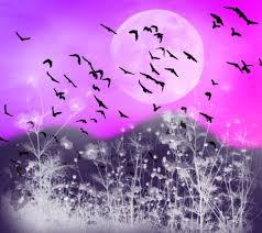 halloween background with purple quotes about blue and purple 63 quotes