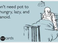 Lazy Day Meme - national lazy day memes memes pics 2018
