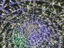inside the main christmas tree picture of cheshire oaks
