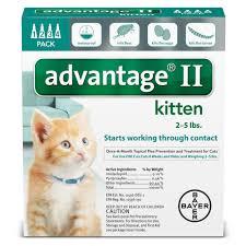 advantage ii once a month cat u0026 kitten topical flea treatment 2
