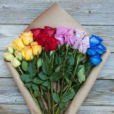multicolored roses rainbow bouq multi colored bouquet the bouqs co