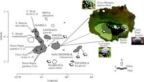 Galapagos Map A Cryptic Taxon Of Galápagos Tortoise In Conservation Peril