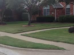sod u0026 grass installation plano tx texas pride landscapes