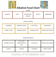 34 best health acid alkaline ph images on pinterest health