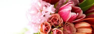 100 flower images pic flower gzsihai com 100 new flowers