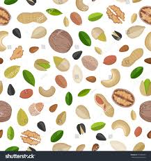 vector seamless pattern nuts seeds flat stock vector 519380335