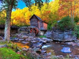9 fall photos positively bursting foliage