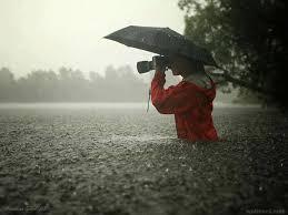Best Photography Best Photographer Image