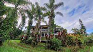 have 20m you can buy the garden of eden u2026 in hawaii sun