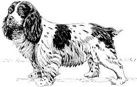 free dog coloring clipart 4 pages public domain clip art