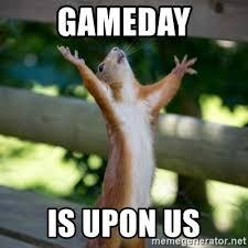 Game Day Meme - gameday is upon us praising squirrel meme generator