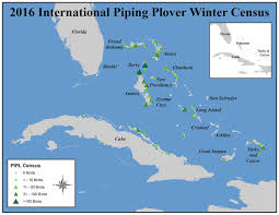 Map Of Eastern Caribbean by The Caribbean U0027s Piping Plover A Matter Of Knowing Where To Look